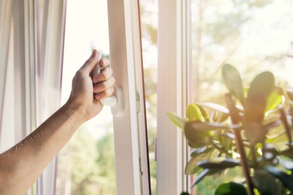 Self-cleaning windows